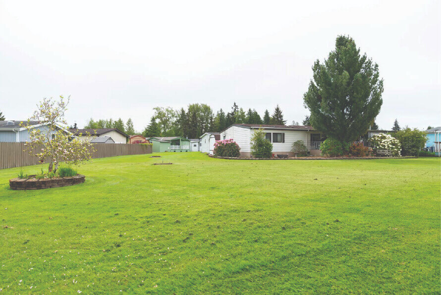 manufactured home lawn